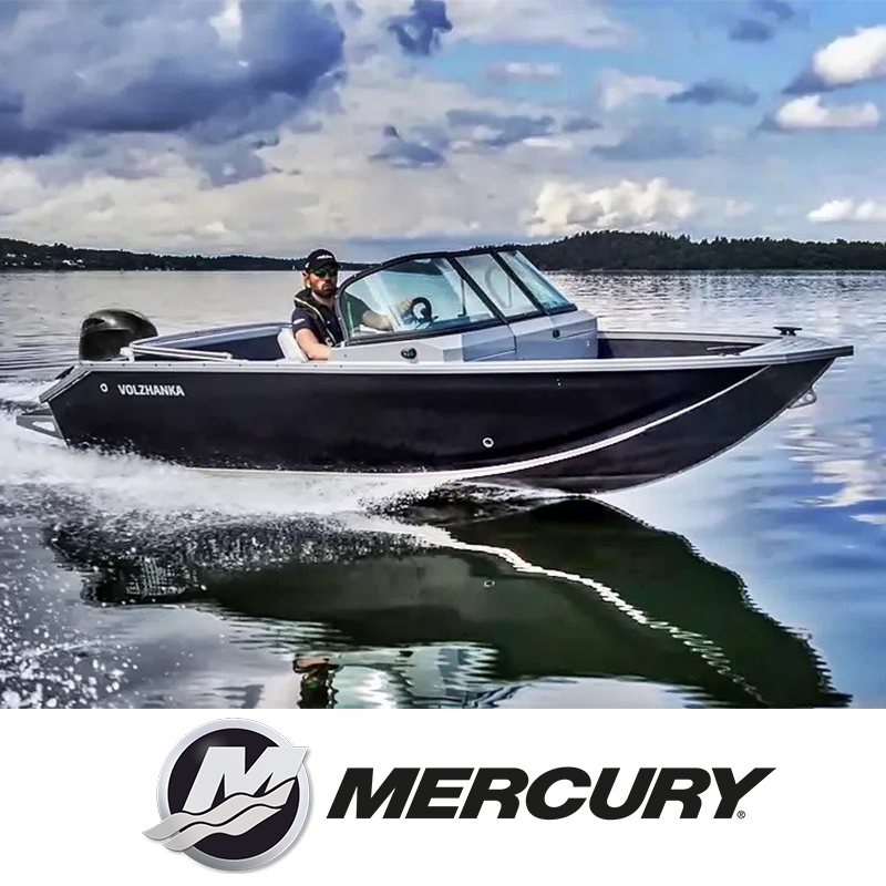 V-46 Fish + Mercury PAKKUMINE